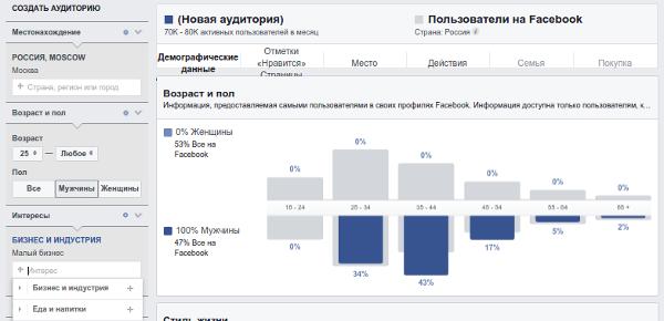 Рис.6. Интерфейс «Статистики аудиторий» Facebook