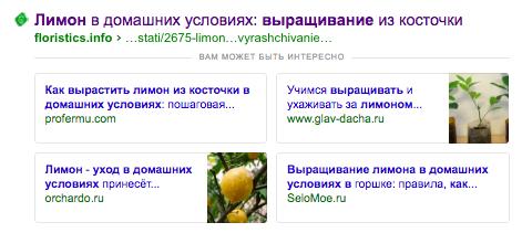 Пример спецэлемента «Вам может быть интересно» Яндекса