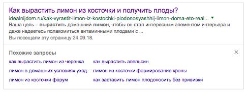 Пример спецэлемента «Похожие запросы» Google